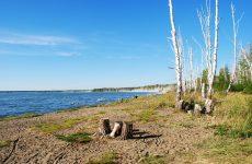 Озеро Курги